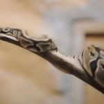serpiente5